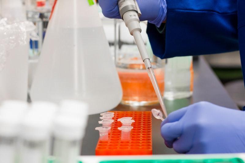 Aby zbadać florę bakteryjną jelit, potrzebna jest próbka kału