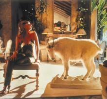 koza w domu